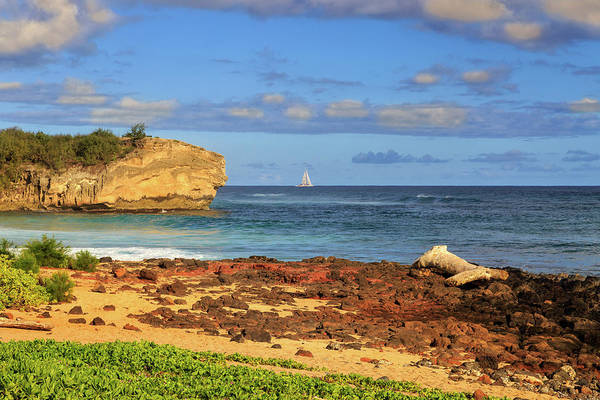 Photograph - Shipwreck Rock Poipu by James Eddy