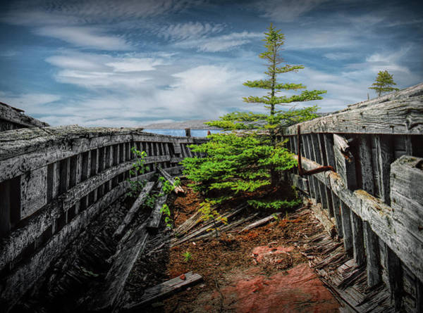 Photograph - Shipwreck With Pine Tree At Neys Provincial Park In Ontario Canada by Randall Nyhof
