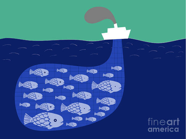 Wall Art - Digital Art - Shoal Of Fish In The Boat Fishnet by Complot