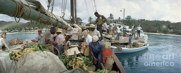 Photograph - Shoppers Search For Supplies And Fruit On A Schooner From Puerto Rico. by James L Stanfield