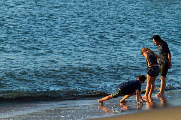 Photograph - Shoreline Fun by Bonnie Follett