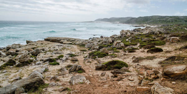 Photograph - Shoreline Near The Cape Of Good Hope. by Rob Huntley