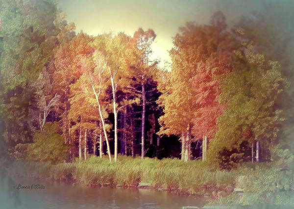Photograph - Shores Of Reelfoot Lake by Bonnie Willis
