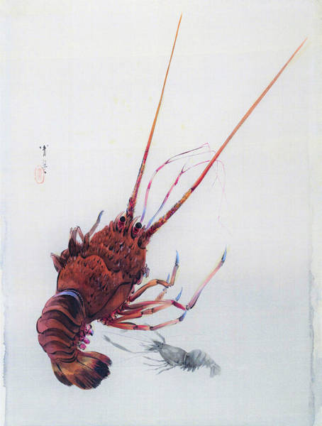 Wall Art - Painting - Shrimp And Lobster - Digital Remastered Edition by Watanabe Seitei