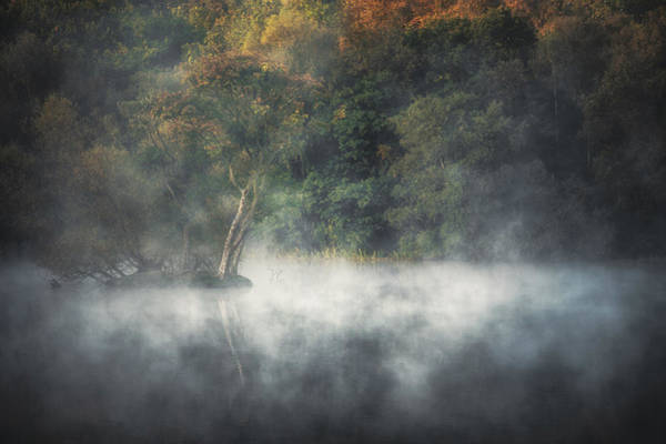 Photograph - Shrouded by Chris Fletcher