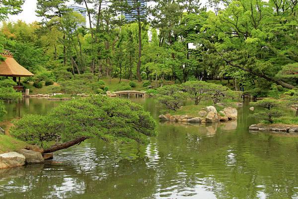 Photograph - Shukkeien Garden - Hiroshima, Japan by Richard Krebs