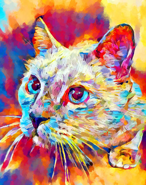 Wall Art - Painting - Siamese Cat 2 by Chris Butler