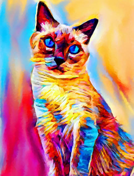 Wall Art - Painting - Siamese Cat by Chris Butler