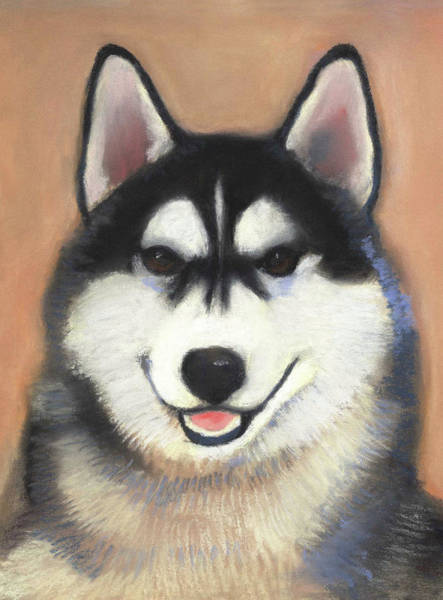 Pastel - Siberian Husky by Linda Ruiz-Lozito