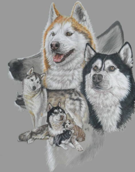 Mixed Media - Siberian Husky Revamp by Barbara Keith