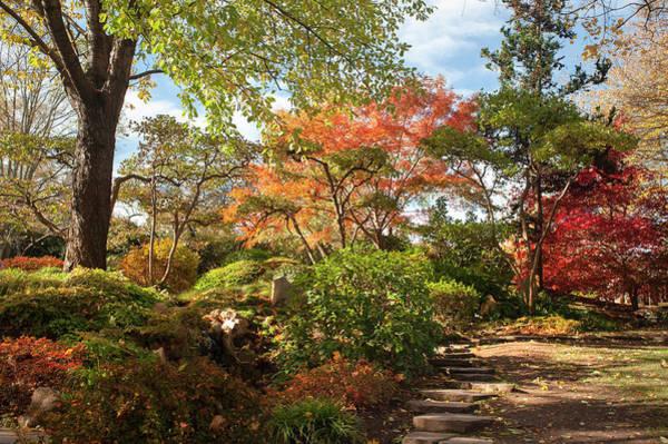 Photograph - Sidewalk Through Japanese Garden by Jenny Rainbow