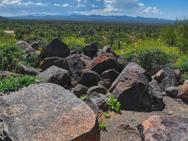 Photograph - Signal Hill Petroglyph #2 by Chance Kafka