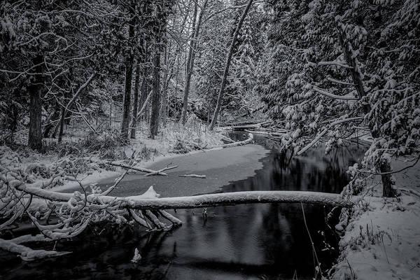Photograph - Silence  by David Heilman