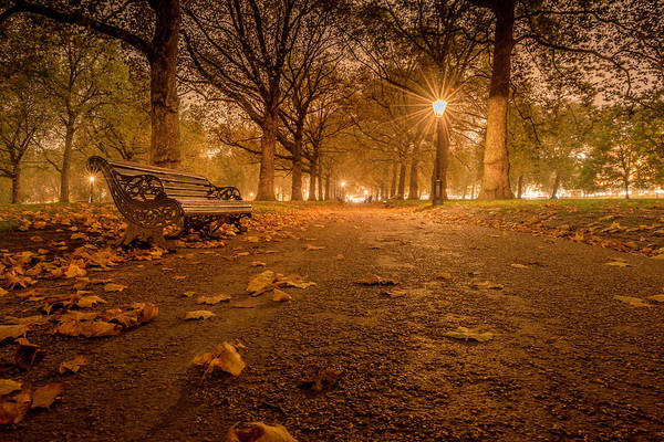 Photograph - Silence In St. James Park by Thomas Gaitley