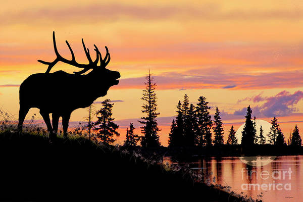 Wall Art - Painting - Silhouette Elk Lake Sunset Reflections by Dale E Jackson