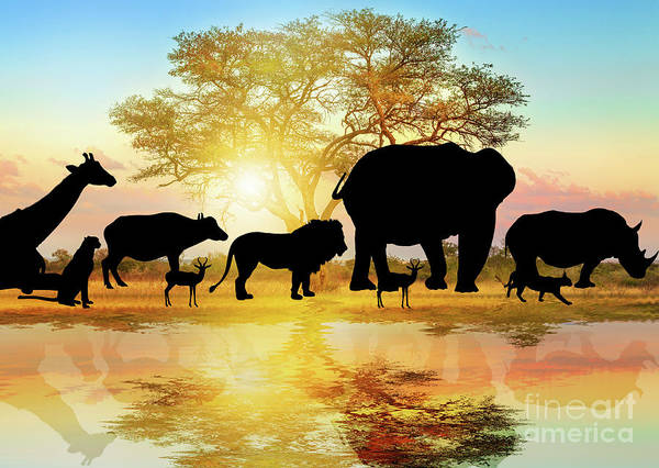 Photograph - Silhouette Of African Wildlife by Benny Marty