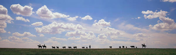 Wall Art - Photograph - Silhouette Of Cowboys With Cows On Ridge by Timothy Hearsum