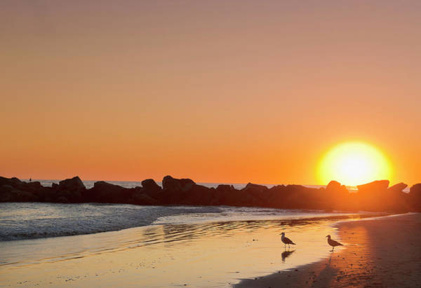 Silhouette Photograph - Silhouette Of Rocks On Beach At Sunset by Max Bailen