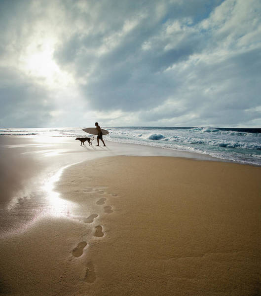 Photograph - Silhouette Of Surfer With Dog Walking by Ed Freeman