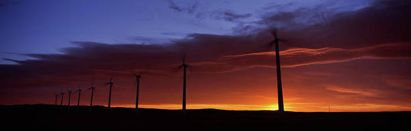 Wall Art - Photograph - Silhouette Of Windmills In A Field by Panoramic Images