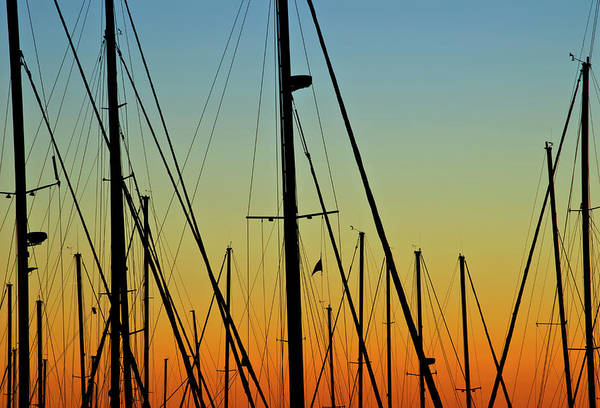 Silhouette Photograph - Silhouettes Of Sail Boat Masts And by Joseph Shields