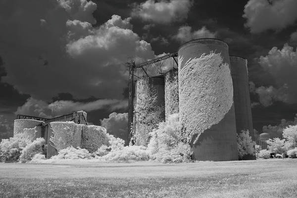 Wall Art - Photograph - Silos And Ivy by Amy Curtis