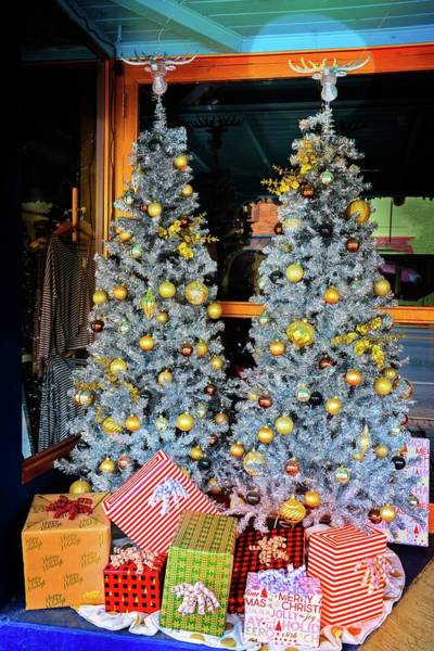 Photograph - Silver And Gold Christmas On Main Street by Lynn Bauer