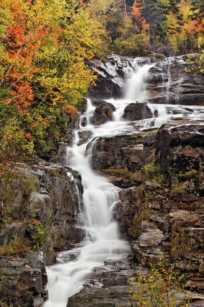 Silver Cascade And Fall Colors Art Print