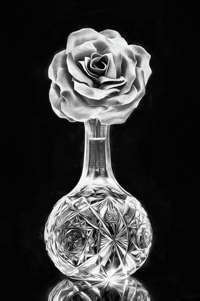 Digital Art - Silver Rose Still Life by JC Findley
