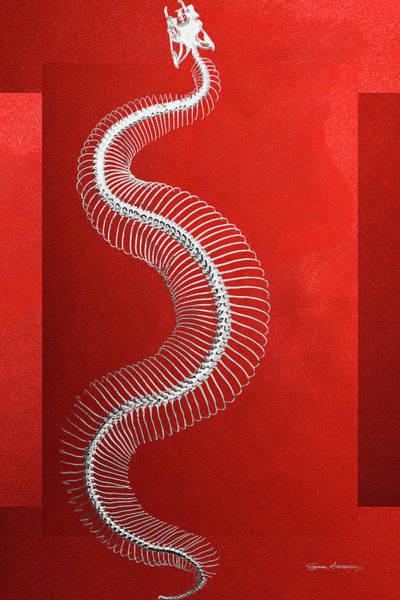 Digital Art - Silver Snake Skeleton Over Red Canvas by Serge Averbukh
