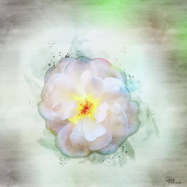 Painting - Simplicity In Digital Watercolor by Rick Furmanek