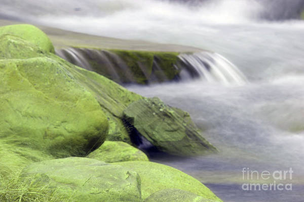 Wall Art - Photograph - Simplicity by Jeff Swan