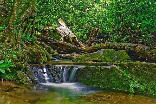 Photograph - Sims Creek Waterfall by Meta Gatschenberger