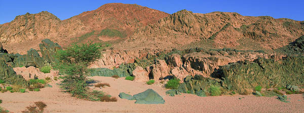 Photograph - Sinai Desert by Sun Travels