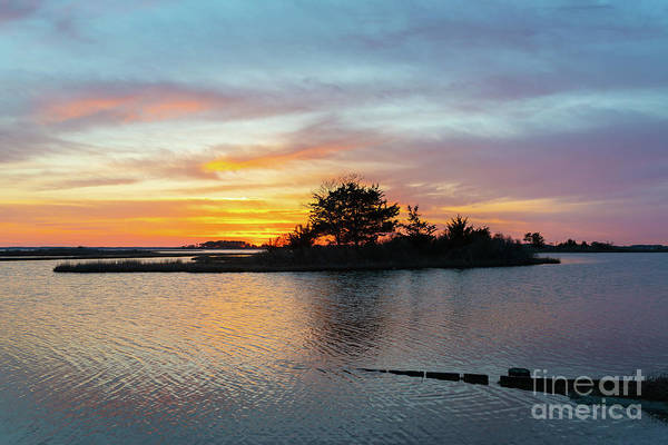 Photograph - Sinepuxent Bay Sunset  by Michael Ver Sprill
