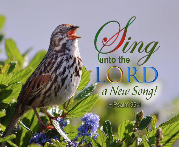 Photograph - Sing To The Lord by Brian Tada