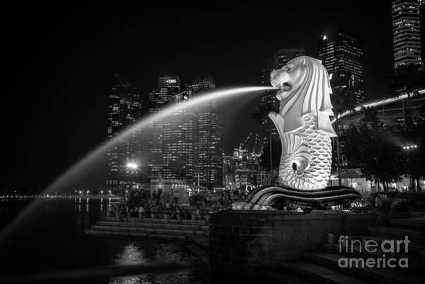 Wall Art - Photograph - Singapore Merlion by Delphimages Photo Creations