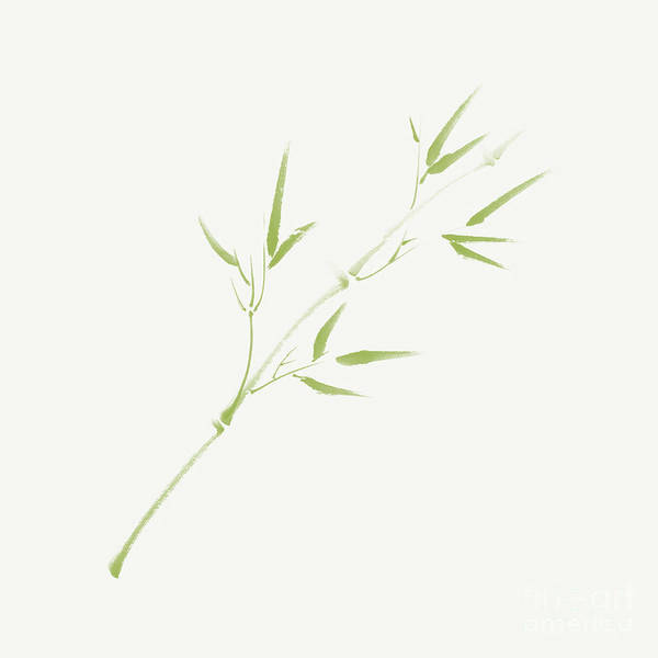Single Leaf Mixed Media - Single Branch Of Light Green Young Bamboo With Leaves On Ivory B by Awen Fine Art Prints
