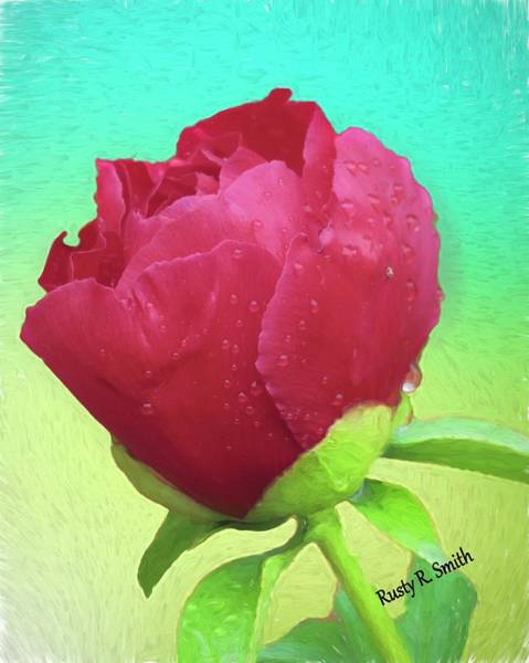Digital Art - Single Red Rose by Rusty R Smith