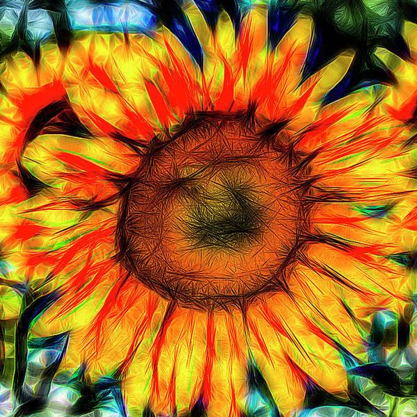 Wall Art - Photograph - Single Sunflower Art by David Pyatt