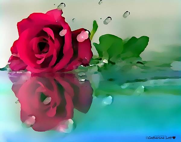 Digital Art - Single Wet Red Rose by Catherine Lott