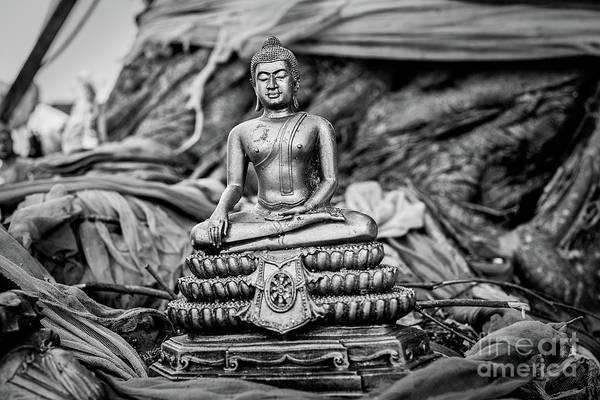 Wall Art - Photograph - Sitting Buddha I by Dean Harte