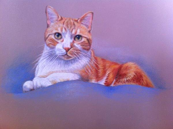Painting - Sitting Pretty by Tammy Taylor