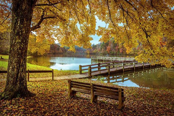 Photograph - Sitting Under Golden Inspiration by Debra and Dave Vanderlaan