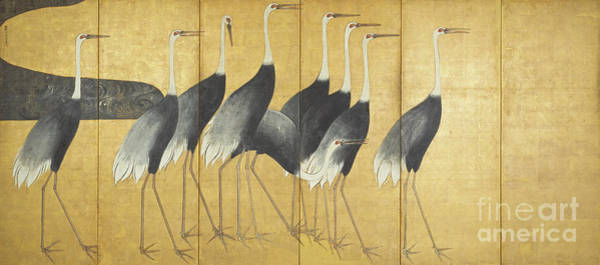 Stork Painting - Six Panel Screen Depicting Cranes, Edo Period by Ogata Korin