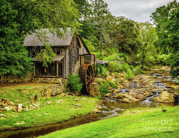 Photograph - Sixes Mill - Georgia by Nick Zelinsky