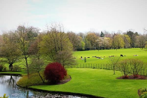 Wall Art - Photograph - Sizerg Castle Garden 3 by Loretta S
