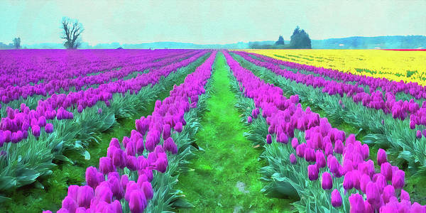Painting - Skagit Valley - 07 by Andrea Mazzocchetti