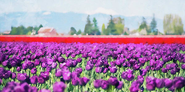 Painting - Skagit Valley - 08 by Andrea Mazzocchetti