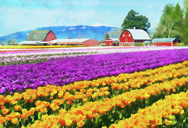 Painting - Skagit Valley - 10 by Andrea Mazzocchetti
